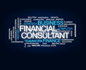 Anugraha Finserve Consulting