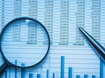 Audits & Taxation